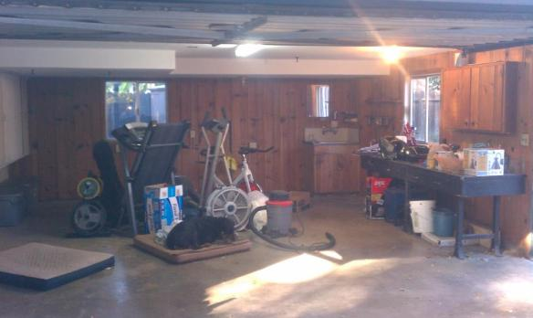 before garage pic3