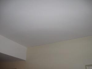 ceilings 006