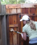 staining fences and screen posts 010