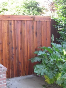 staining fences and screen posts 014