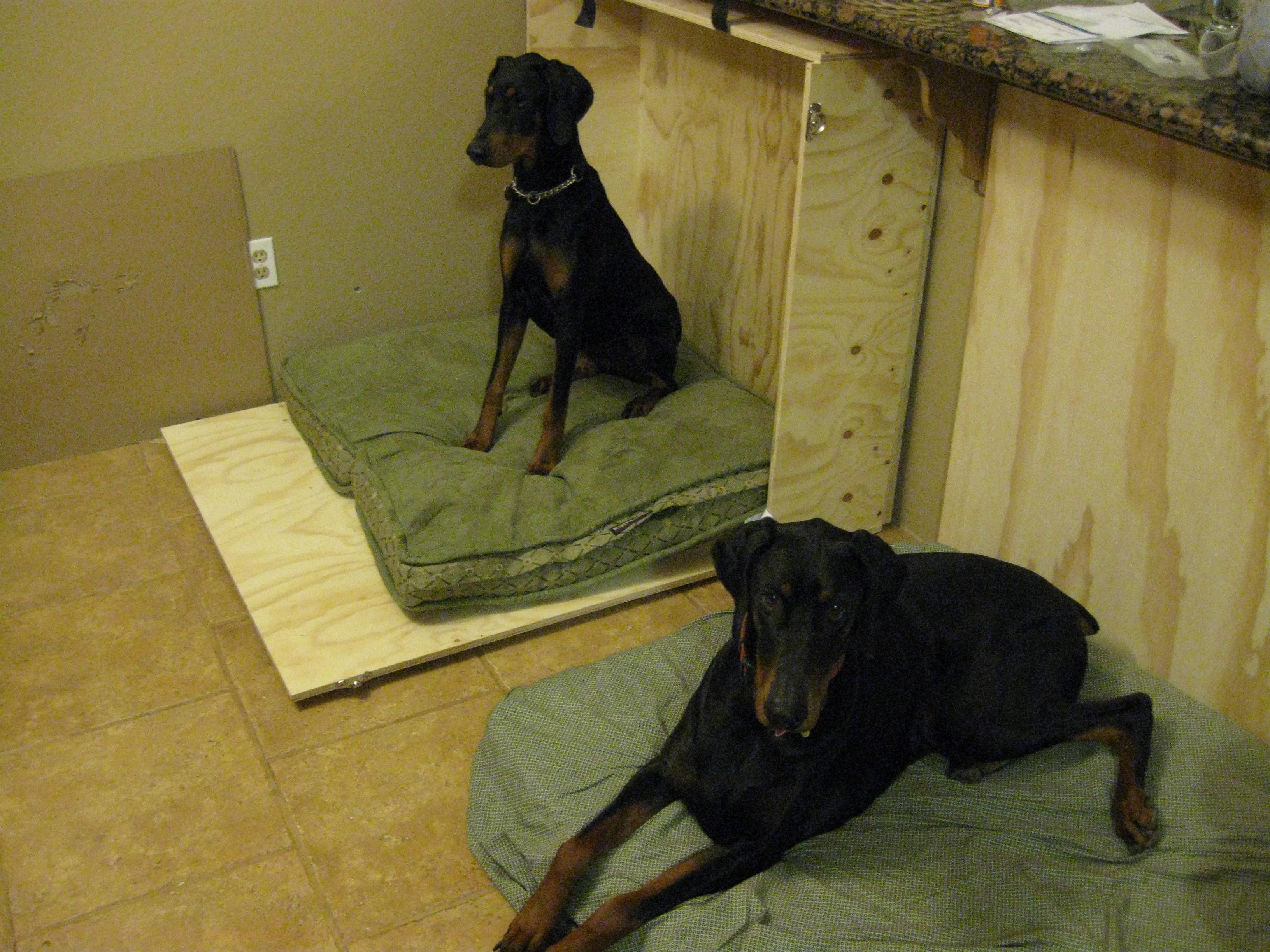 murphy dog beds | littlehousesbigdogs