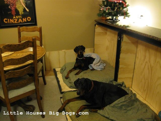 Murphy Dog Beds First Home Flashback Littlehousesbigdogs