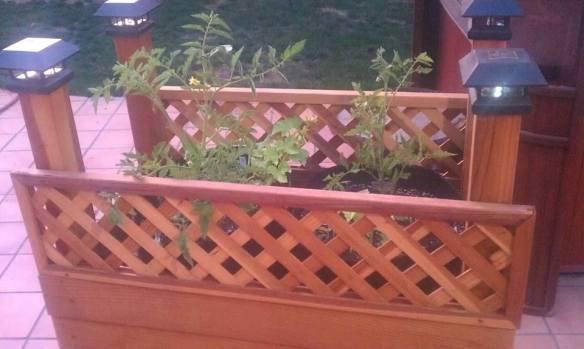 rolling garden cart baby plants 3