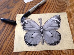 butterfly fence art 002