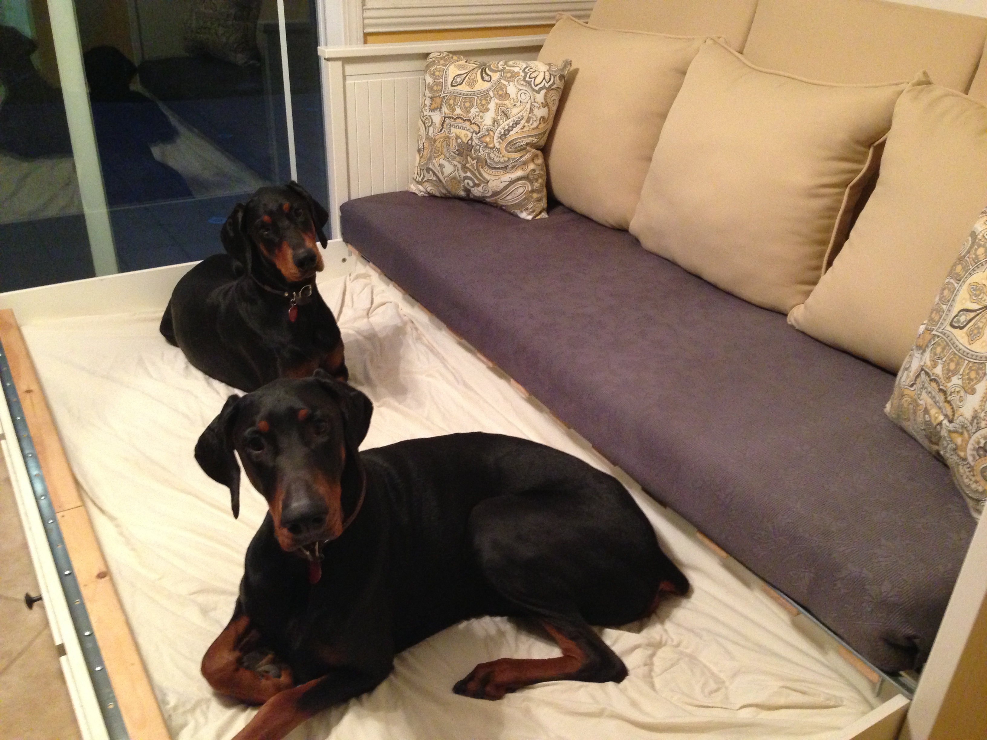 Ikea Hack AlertBench Seating And Dog Bed
