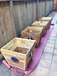 cheap planter idea tree box planter 005