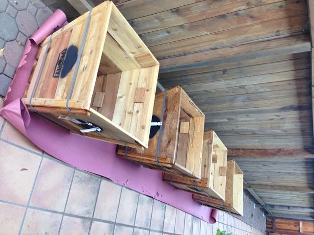 Starting Our Bali Side Yard Tree Box Planters Littlehousesbigdogs