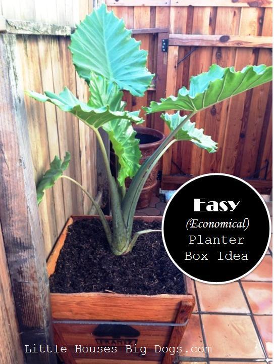 Cheap Planter Box Idea Littlehousesbigdogs