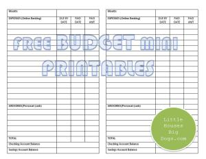 free mini budget printables asset and liabilities tracker