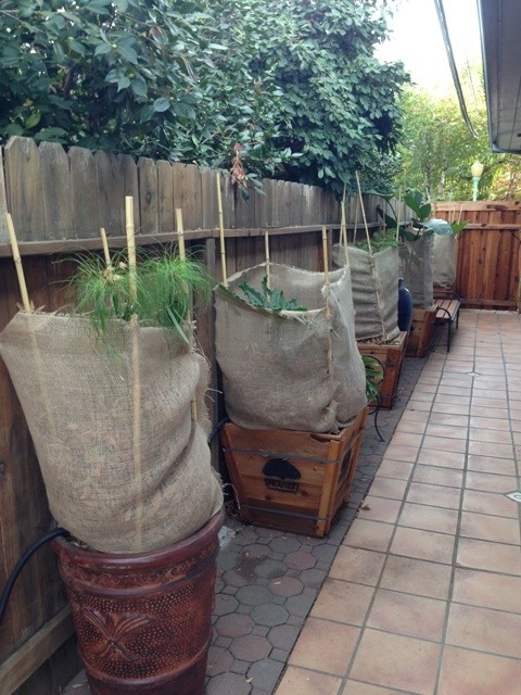 how to make plant bags