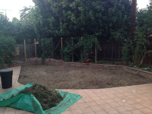 removing-weeds-and-sod-in-backyard.jpg