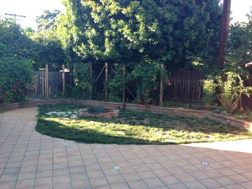 Dog Friendly Backyard Makeover : Small California Backyard Transformation Water wise and Dog Proof